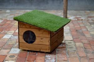 Öko kutyaház