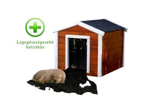 Legegészségesebb kutyaház